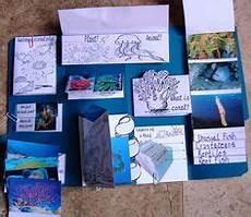 1000 images about lapbooks pinterest lap books unit studies and homeschool