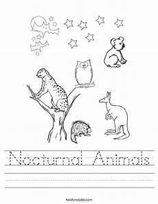 nocturnal animals worksheets 13983 nocturnal animals worksheet twisty noodle