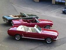 Innerspace 1967 Mustang Convertible  Mustangs In The
