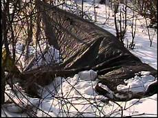 found living tarp in woods during homeless count
