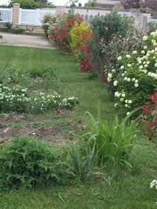Une Haie Qui Pousse Vite Page 4 Au Jardin Forum De