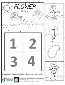 worksheets on plants cycle 13606 flower cycle worksheet cycles plant cycle worksheet parts of a plant