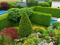 Natürlicher Sichtschutz Im Garten - sichtschutz mit hecken kletterpflanzen und ziergr 228 sern