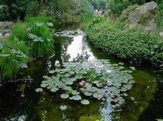 giardini mortella ischia giardini la mortella ischia mortella forio d ischia