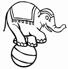 circus elephant coloring pages for best place to color