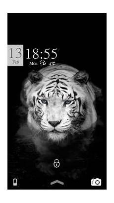 Gambar Macan Putih Marah 3d Blacki Gambar