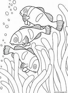 Ausmalbilder Malvorlagen Malbuch Ausmalbilder Exklusives Foto Meerestieren
