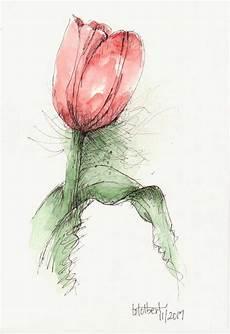 Aquarell Malvorlagen Word Tulip Original Watercolor Painting Pen And Ink