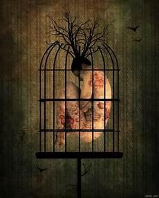 in gabbia la pared de la jaula