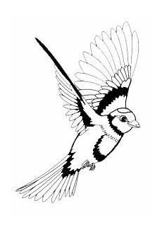 Vogel Malvorlagen Instagram Ausmalbilder Vogel Kostenlos Ausdrucken