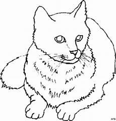 liegende suesse katze ausmalbild malvorlage tiere