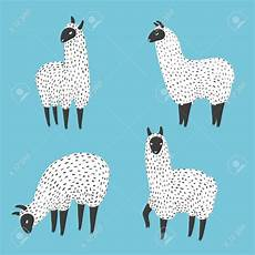 set of llama vector illustration of