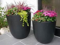 Pflanzkübel Modern Bepflanzen - blumenk 252 bel nero der blumeninsel mainau aus fiberglas in