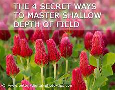 min depth of 4 ways to get shallow depth of field and make your subject