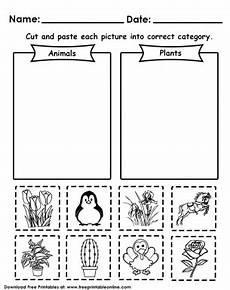 plants and animals worksheets for kindergarten 13507 animals or plants worksheets