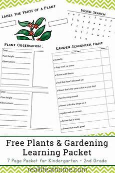 plant worksheets for 2nd grade 13739 free garden and plant worksheets for kindergarten 2nd grade homeschool giveaways