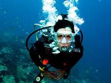 the new rostra rostra novum a new blog scuba diving