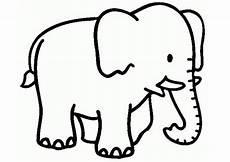 Malvorlage Kleiner Elefant Elefanten Ausmalbilder 15 Ausmalbilder