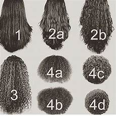 Black Hair Curl Patterns