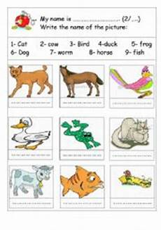 animal worksheets grade 2 13869 worksheets worksheets page 5