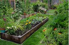 are backyard gardens a weapon against climate change modern farmer