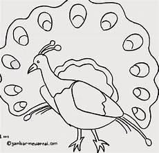 Gambar Mewarnai Burung Gambar Mewarnai Lucu