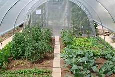 serre tunnel serre de jardin tunnel serres plastiques