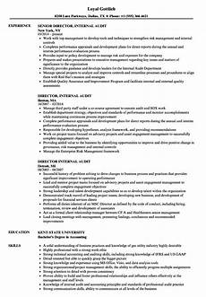 director internal audit resume sles velvet