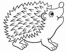 Malvorlage Hase Und Igel Bildergebnis F 252 R Gedicht Igel Hedgehog Igel