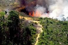Pengertian Bencana Alam Macam Macam Lengkap Dengan Gambar