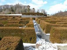 the peace maze picture of castlewellan forest park