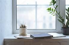 davanzale interno pareti bianche interno minimalista piante
