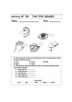 worksheets in science grade 3 sense organs 12530 sense of organs worksheets search 2nd grade worksheets worksheets worksheets for