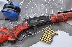 rinnovo porto armi amnistia e porto d armi i chiarimenti tar della