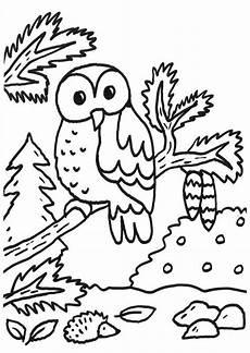 Malvorlagen Kinder Wald Kostenlose Malvorlage Eulen Eule Im Wald Zum Ausmalen