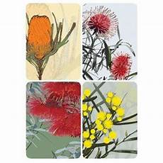 Kitchen Bouquet In Australia by Iconic Australian Flowers Magnet Pack For