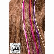 plume de cheveux plumes pour cheveux grizzly brune cupcake