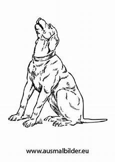 ausmalbilder jaulender hund hunde malvorlagen