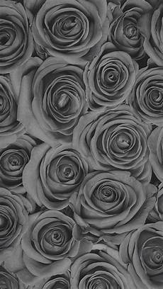 flower wallpaper grey pin by latisha m on 4 wallies in 2019 flower