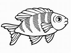 ausmalbilder fisch malvorlagen ausdrucken 1