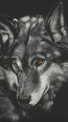 Wolf Wallpaper 4k Iphone