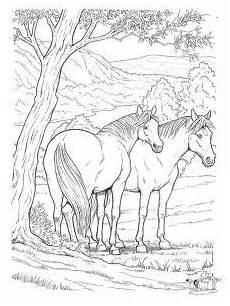 ausmalbilder pferde zum ausdrucken in 2020 ausmalbilder