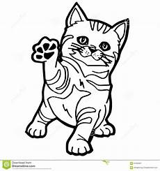 cat coloring page stock vector image of green
