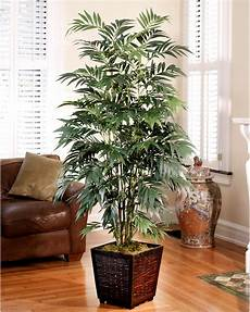 decorate with a customer favorite 6 silk bamboo palm tree at petals