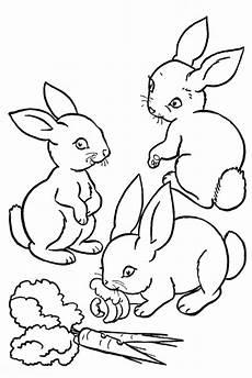 Malvorlagen Hasen Gratis Gratis Ausmalbilder Kaninchen Ausmalbilder