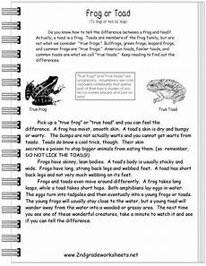 15 best images of informational nonfiction worksheets non fiction text graphic organizer text