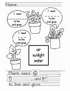 plants and seeds worksheets for kindergarten 13631 students complete this activity and color it unit content ideas tiny seed activities