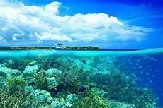 Keindahan Bawah Laut Indonesia Diboyong Ke 3 Kota