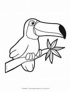 rainforest animals coloring pages preschool 17131 tucan outline toucan printable templates coloring pages firstpalette brazil swaps