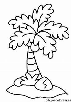 palma llanera para colorear dibujo de palmera isla para colorear dibujos para colorear dibujos